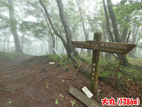 丹沢登山:大丸(1341m)