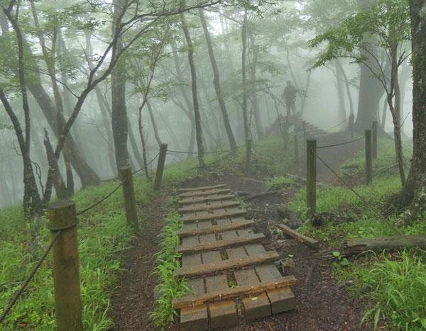 丹沢登山:塔ノ岳から鍋割山へ向かう