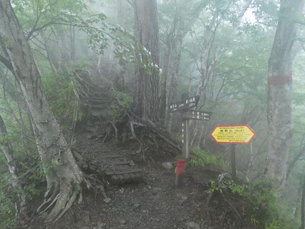 丹沢登山:後沢乗越