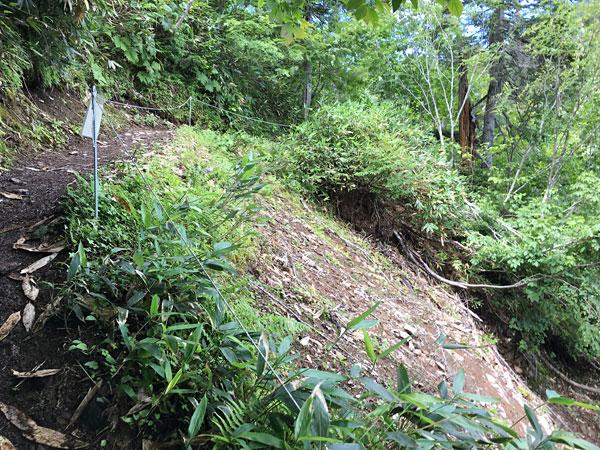 尾瀬沼・がけ崩れの箇所がありました。