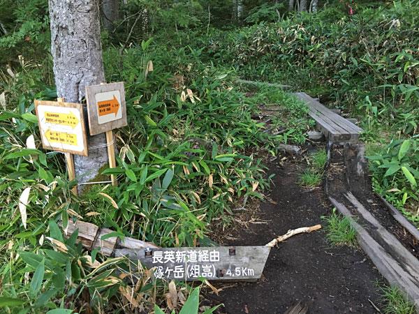 燧ケ岳登山・尾瀬沼分岐点(長英新道へ)