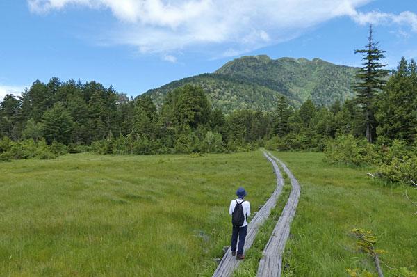 燧ケ岳と湿原と木道