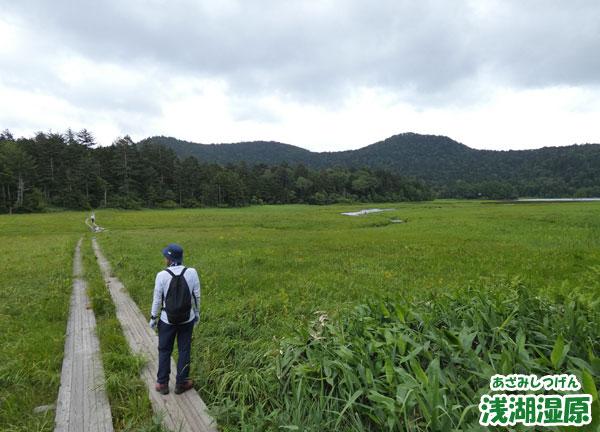 浅湖湿原(あざみしつげん)