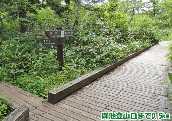 燧ケ岳登山・御池登山口まで0.5km