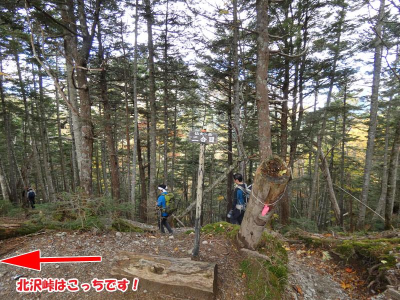 仙丈ヶ岳メインルート・二合目