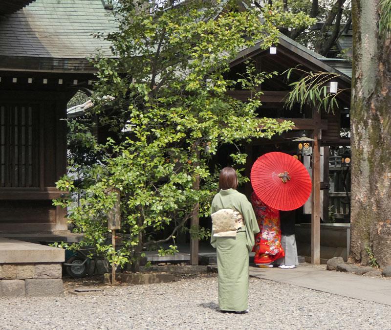川越氷川神社境内で結婚式が行われていた?
