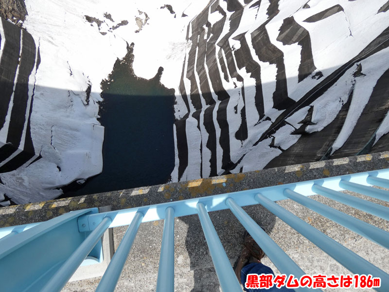 黒部ダムの高さは186m