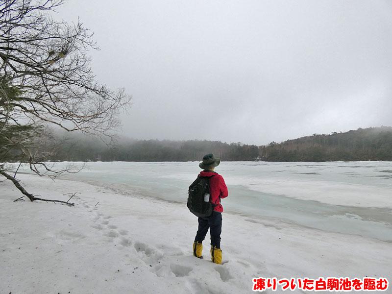 凍りついた白駒池を臨む
