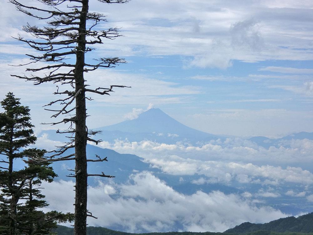 杣添尾根・富士山を眺望