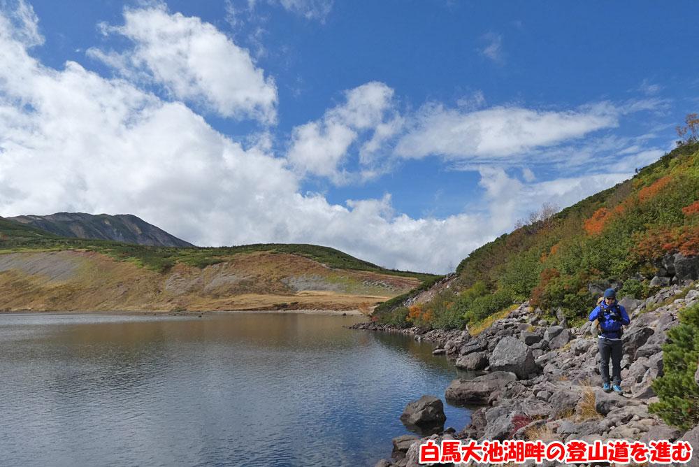 白馬大池湖畔の登山道を進む