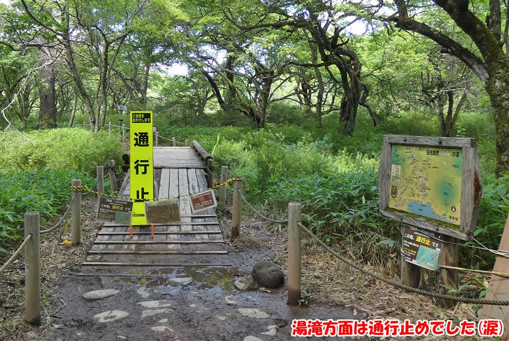 戦場ヶ原・湯滝方面は通行止めでした