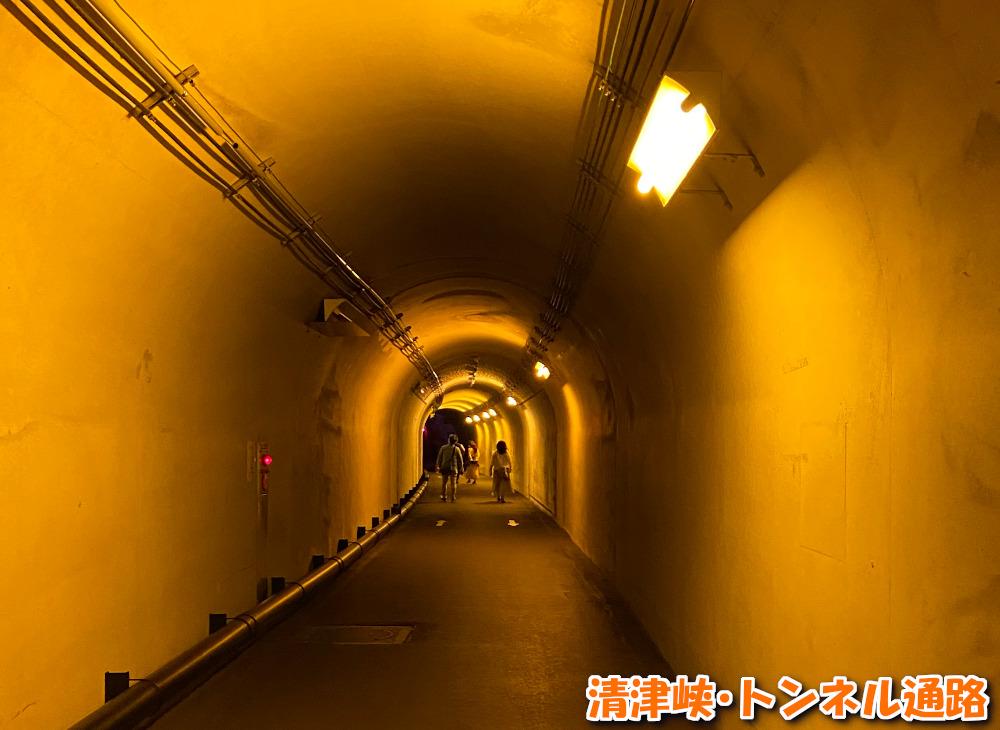 清津峡・トンネル通路